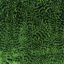 Lizong Velvet by Nina Campbell - Emerald